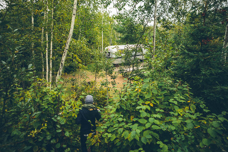 explore minnesota airstream forest