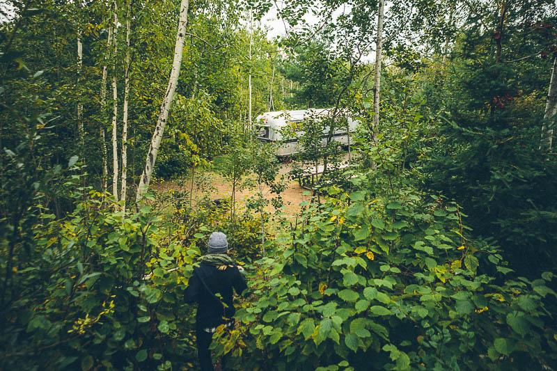 explore minnesota airstream forest