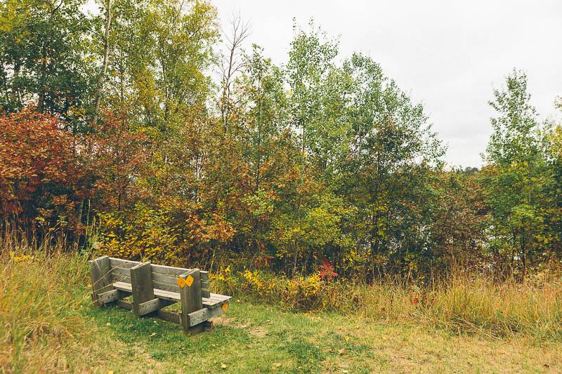 explore minnesota paul bunyan trail bench