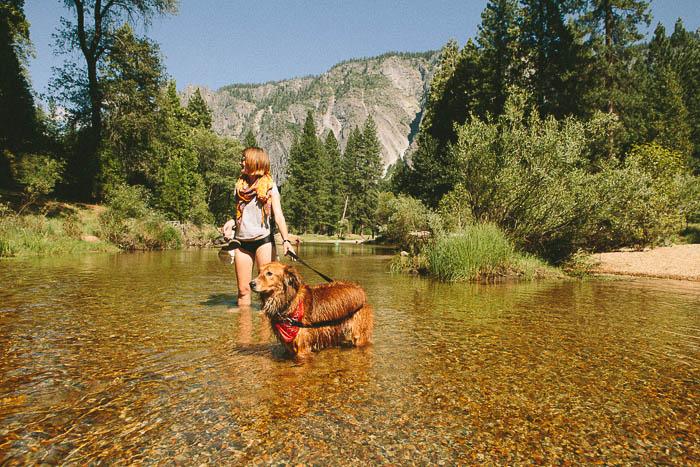 Yosemite National Park The Democratic Travelers